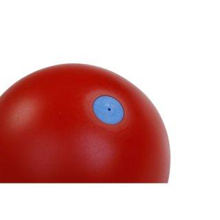 Trial Wurfball 1kg